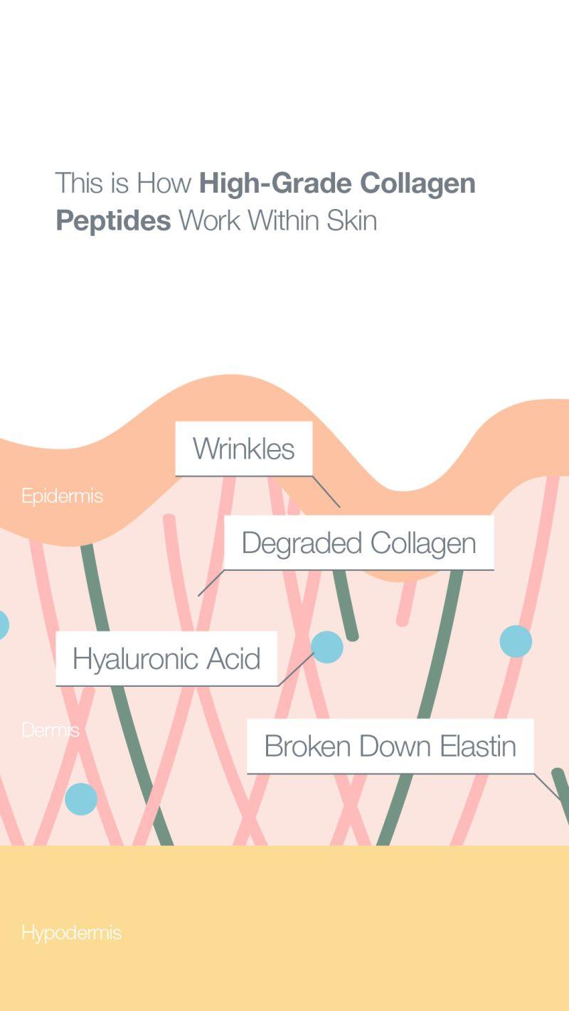 high grade verisol collagen peptides