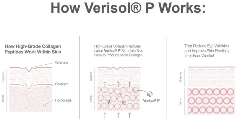 how does verisol p collagen work